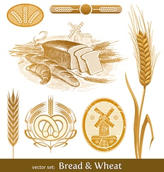 set - bread and wheat vector image