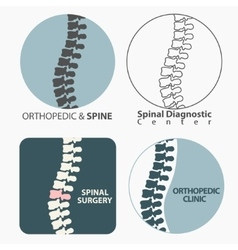 Spine diagnostics center vector image vector image