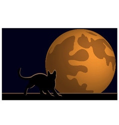 Wallpaper halloween moon cat vector