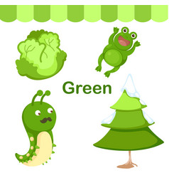 isolated color green group vector image