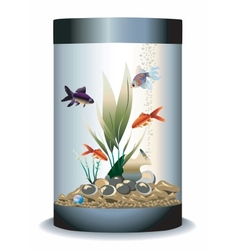 Aquarium with fishes vector