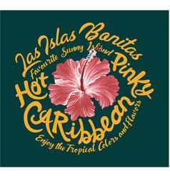 Hot pinky caribbean hibiscus vector
