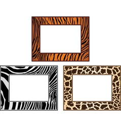 Collection of african framework vector
