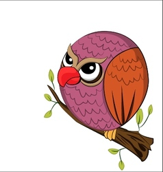 angry owl vector image vector image