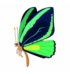 Dark blue-green butterfly icon cartoon style vector