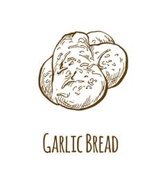 Garlic bread hand drawn vector