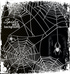 Spider web background vector