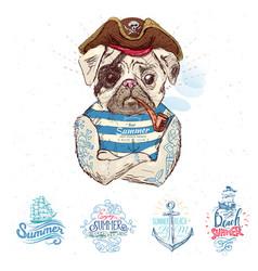 Pirate pug dog vector