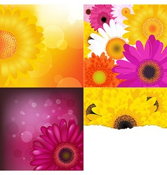 Flower Backgrounds Set vector image vector image