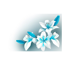 white and blue blooming flowers vector image vector image