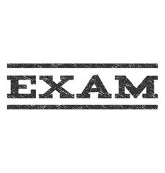 Exam watermark stamp vector