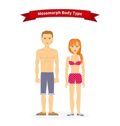 Mesomorph body type woman and man vector