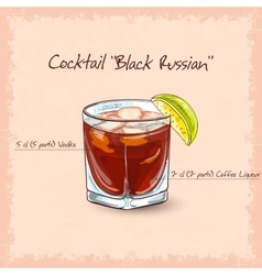 Black russian vector image