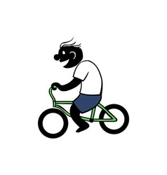 Boy Riding Bicycle vector image vector image