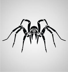Tribal spider vector