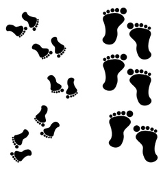 Traces of feet vector