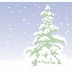 fir tree winter vector image