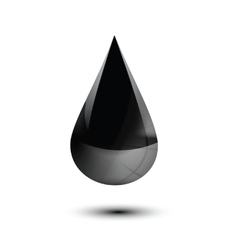 oil droplet isolated on white vector image vector image