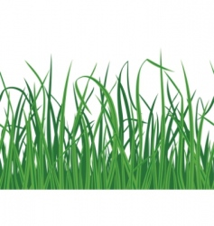 Grass seamless background vector