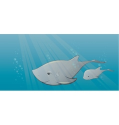 Shark and calf in sea vector