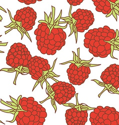 Ripe raspberry seamless pettern isolated on white vector