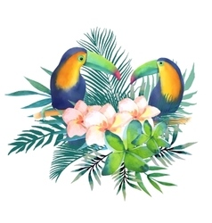 Watercolor with toucans vector image