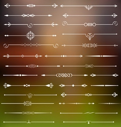 Calligraphic dividers and page decor vector