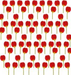 Tulips background vector