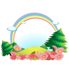 The colorful rainbow at the hilltop vector image