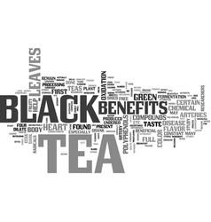 benefits of black tea text word cloud concept vector image vector image