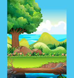 Scene with trees in the field vector