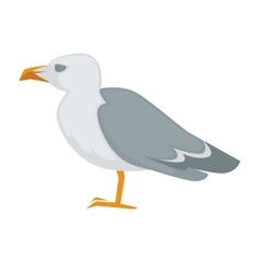 Colorful sea gull bird vector image