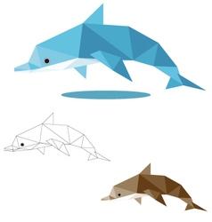 Dolphin low polygon vector