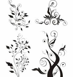 floral elements collection vector image