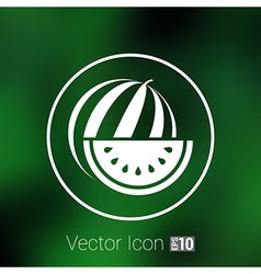 Watermelon icon logo natural delicious dessert vector