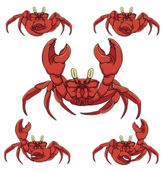 Set of color crabs isolated objects vector image