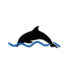 dolphin color vector image vector image