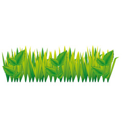 Green grass with leaves icon vector