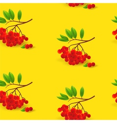 Seamless pattern with rowan Autumn background vector image vector image