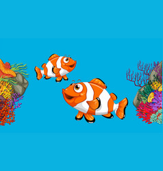 Two clownfish swimming in ocean vector