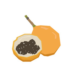 Pair of passion fruits vector