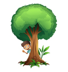 a boy and a tree vector image vector image