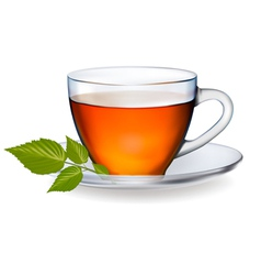cup of tea with leaves vector image