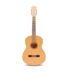 Guitar isolated on white background vector