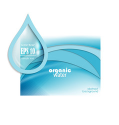 water drop template vector image