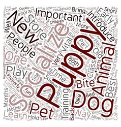 Learn The Methods Of How Your Puppy Can Socialize vector image