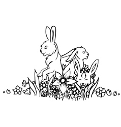 Black and white rabbit isolated vector