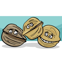 walnuts nuts cartoon vector image vector image