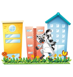 A lemur at the garden near the tall buildings vector