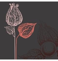 flowers over dark background vector image